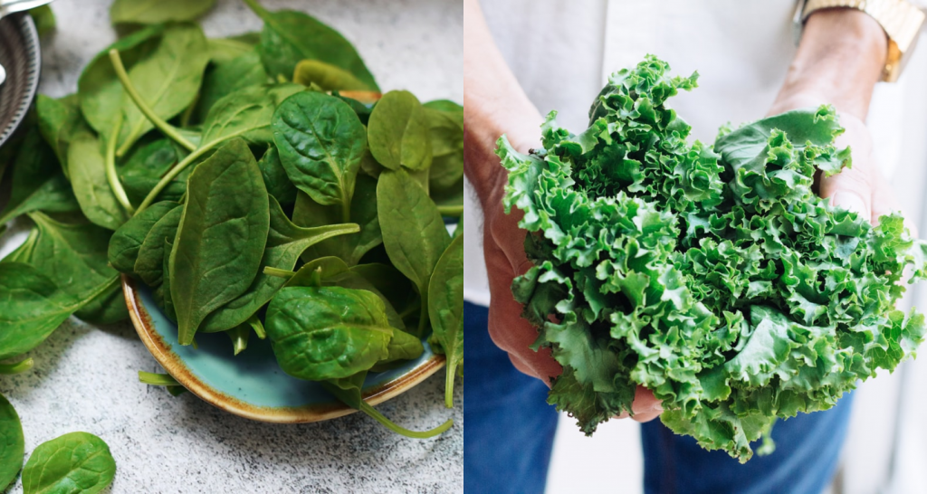 Spinach vs. Kale