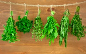 herbs for good health