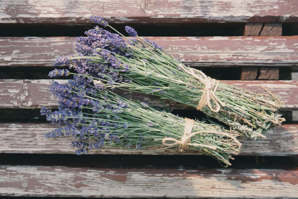 Chill Out with the Scent of Lavender